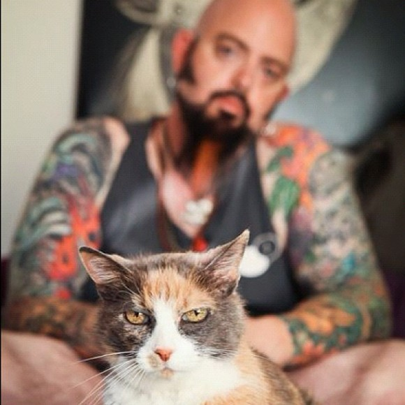 Jackson galaxy the second lunch for Jackson galaxy cat toys australia