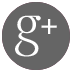 Google-Plus-Link