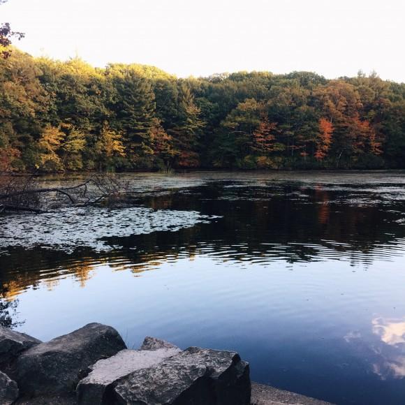 noanet woods lake
