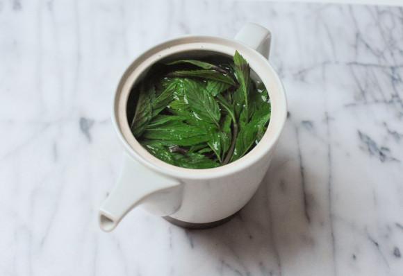 A pot of mint tea