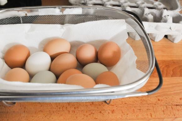 Hard Boiled Eggs Meal Prep