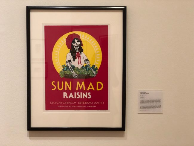 the second lunch the davis museum sun mad ester hernandez