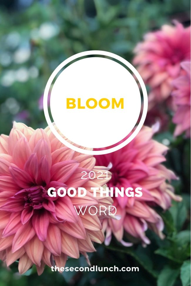Good Things 2021 Word of the Year Bloom on flowers on the Second Lunch
